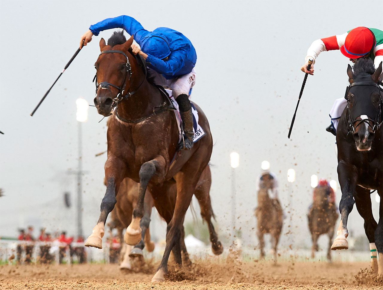 Picture of Thunder Snow (IRE)