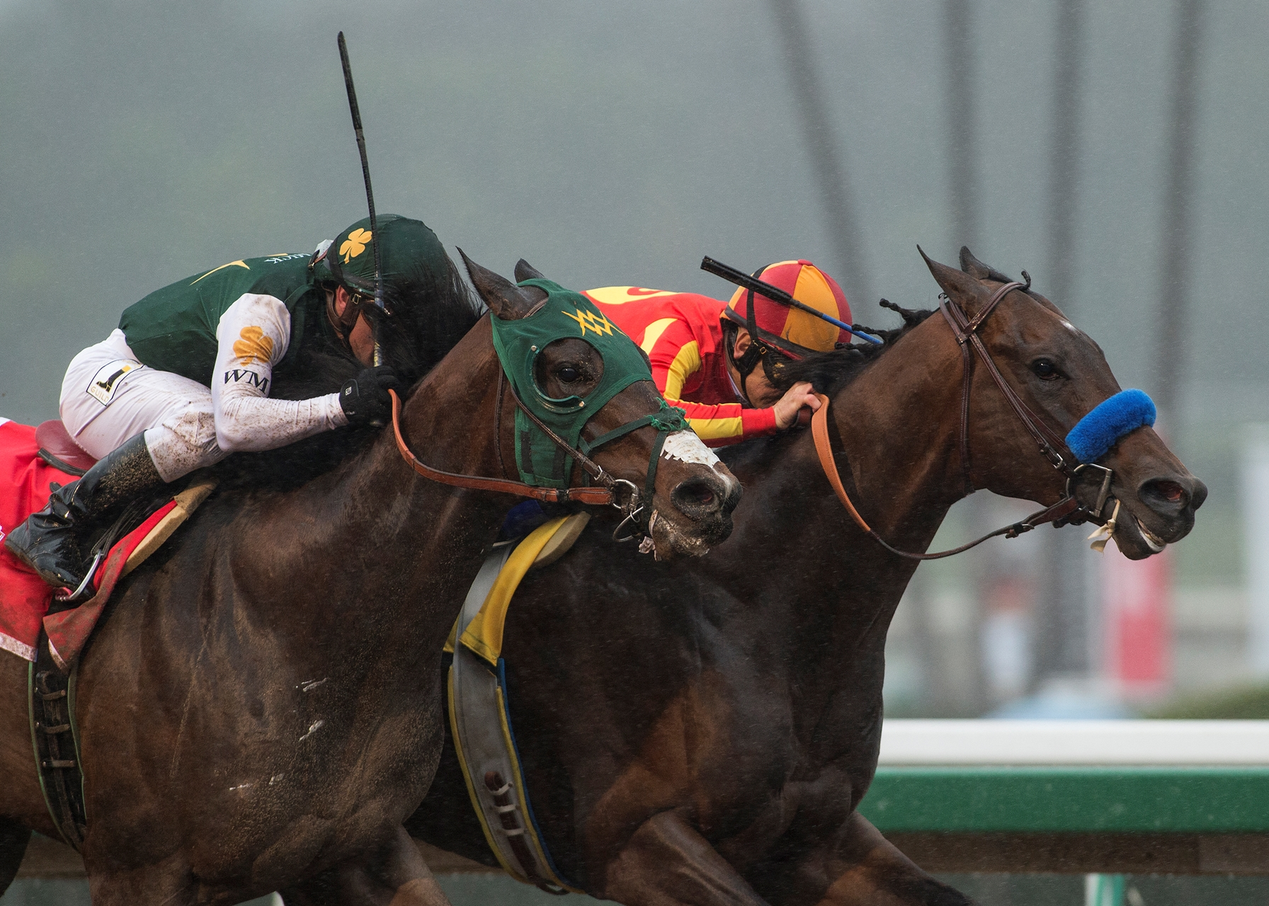 Picture of Bolt d'Oro