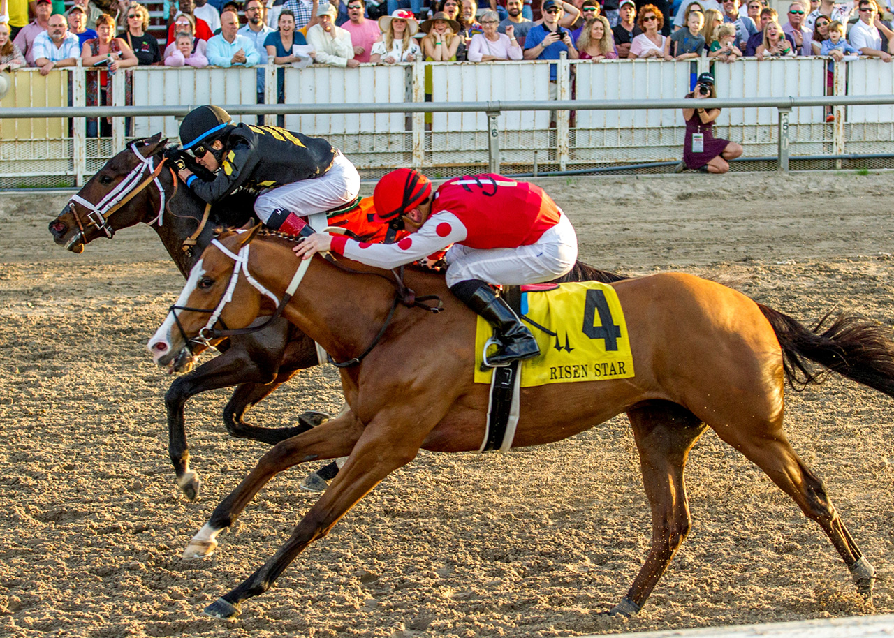 Bravazo 2020 Kentucky Derby Amp Oaks May 1st And 2nd 2020