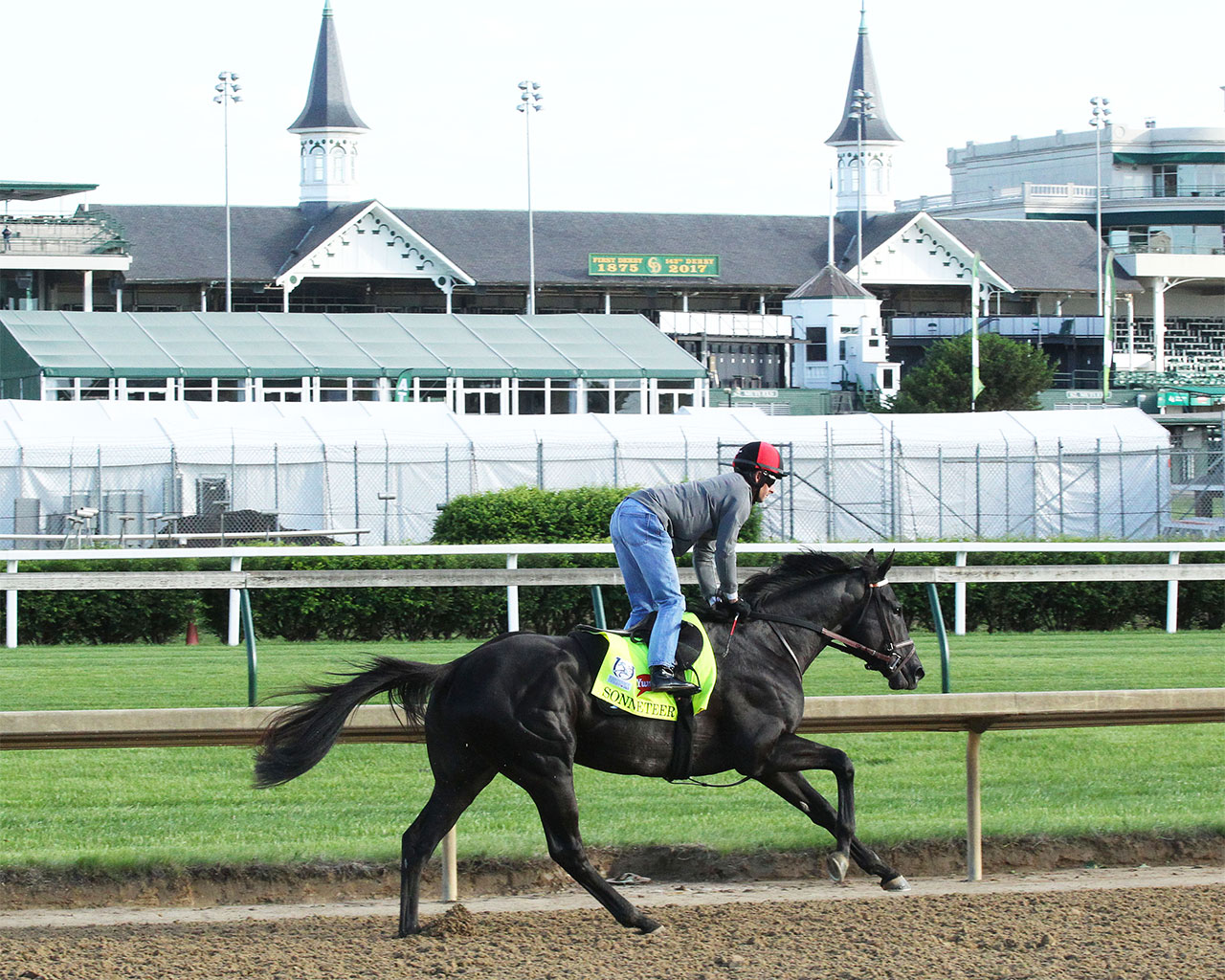 Picture of Sonneteer